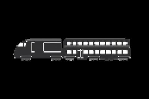 Физическая охрана (сопровождение) грузовых поездов дальнего следования.